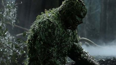 """Photo of Swamp Thing """"Loose Ends"""" Review"""