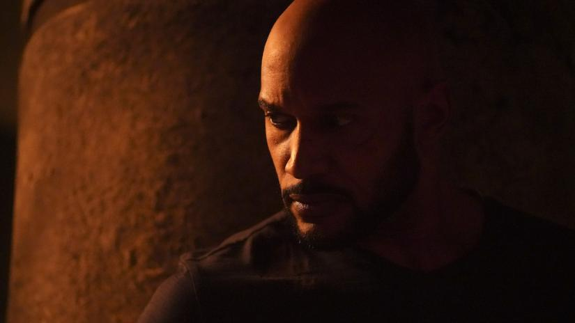"""Photo of Agents Of SHIELD """"From The Ashes"""" Review"""