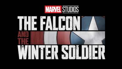 Photo of Falcon and the Winter Soldier Officially Delayed